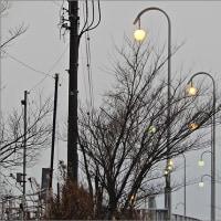 1月22日(日) 曇りの日曜日