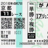 富士、菊花賞 反省