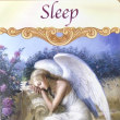 Sleep 眠り  守護天使