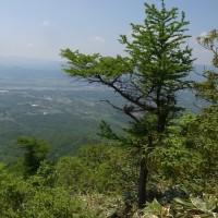 中蒜山登山