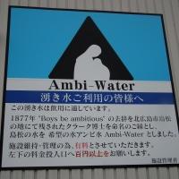 島松(アンビ)の水