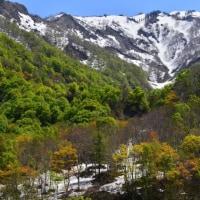 新緑の小谷温泉