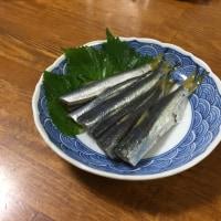 釣り魚料理