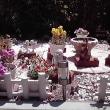冬の花と夏の花