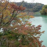 【速報】 久米路峡の紅葉の進捗状況について (2016/10/22)