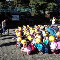 今日も小学生と自然観察・自然遊びでした。岩本山までは今日は暑くて大変でした。