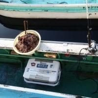 修行! 遊漁船アジ釣り釣行記