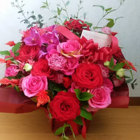 お花に会いたくて