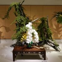 いけばな小原流展 華のおもてなし「白い秋」・・・・堀江 美瑛 (東京支部支部長) さんの作品