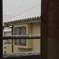 雪の清洲城に行って来ました