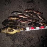 第44回お父さんの釣り大会の結果