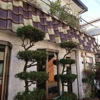 鎌倉の絶品カレー