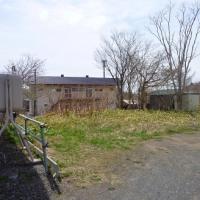 ◆◇5月26日◇◆花のいのちは・・・~新着はリフォーム済の戸建!