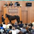 JRA日本中央競馬会購買馬の入厩内訳(日高・宮崎)