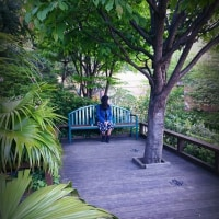 4/23 OCAT屋上ガーデンと なんばパークス