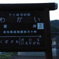 TK27若井(高知県) わかい