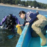 海の公園 あさり調査