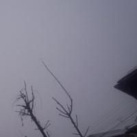仙台の空1月23日、月曜日