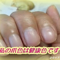 爪の色は健康色・・・