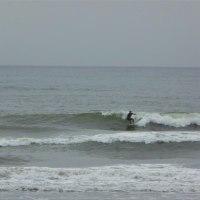 ましましサーフィンの週末!?