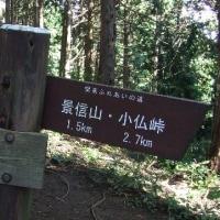 角屋を目指して 高尾山~陣馬山ハイク