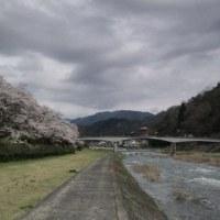 ヤナセ公園