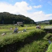 里山体験プログラム「稲刈りにチャレンジ」-1