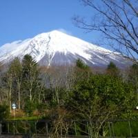 富士山が綺麗だったので