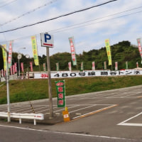 いざ!熊野 中辺路 野中 『秀衡桜』。