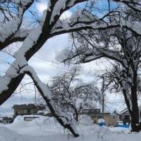 近所の雪下ろし