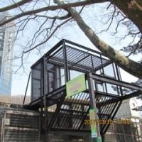 東山動物園80