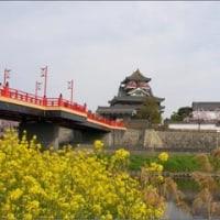 清洲城のさくら