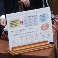 2014年10月30日 予算委員会 質問時使用パネル②(写真のみ)