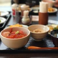 函館-青森旅行 Day 2