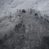今日の雪 樹氷