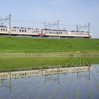 5/3 東武日光線の列車達。