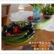 夏バテにならないように。。。野菜で元気モロモリ