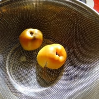 木瓜(ぼけ)の実を採って、ジャムにした。