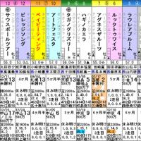 【ベイビーティンク】1/21中京9R 4歳上500万下・枠順&予想