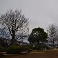 2月27日、午前7時過ぎの空模様