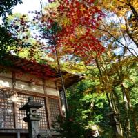 京都の紅葉2016・護法堂弁財天
