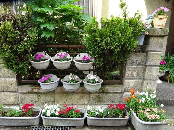 1時間前; プランターに夏の花を植え変える
