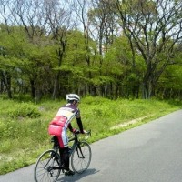 GW、初日、新大阪~京都八幡、往復55キロの旅、くずはゴルフ場と淀川の間のサイクリングロードは、まさに高原の道のようでした・・Miles Davis - The Doo Bop Song