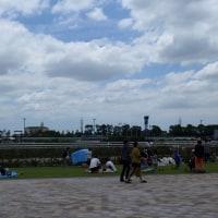 久々に更新。 先日中京競馬場へ行ってきました。