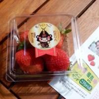 散策!仙台(15)サンモール一番町で亘理のイチゴを食べ、大日如来様にご挨拶をする