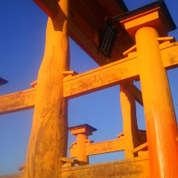 厳島神社の大鳥居