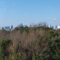 1月の葛西臨海公園:水の広場とクリスタルビュー展望台 PART1