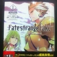 Fate/strange Fake1���δ��ۥ�ӥ塼�ʥ饤�ȥΥ٥��