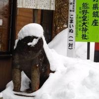 軽井沢のいろいろ 軽井沢の碓氷峠にも春の雪・・