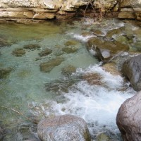 渓流釣り(某川)・・・調査目的釣行(20170530)